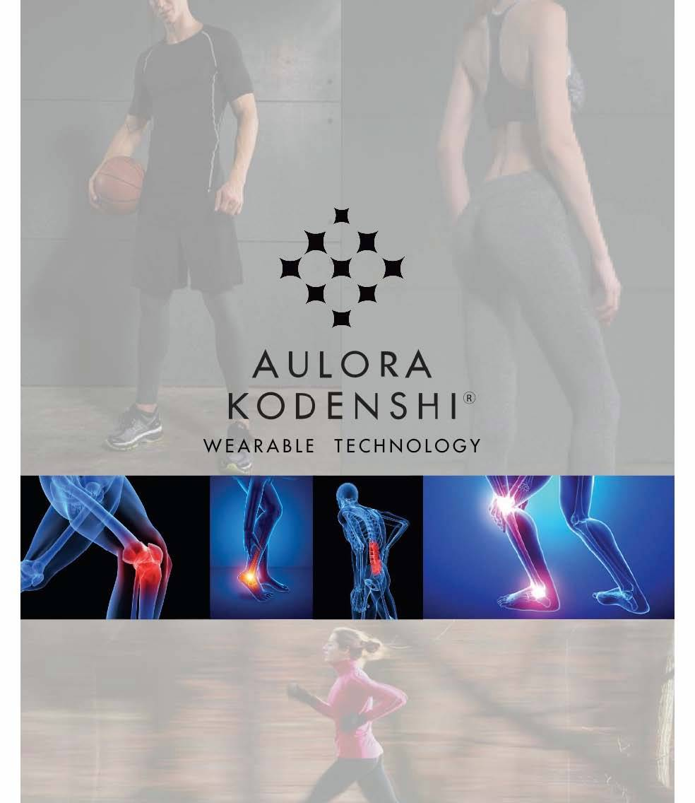 Aulora Kodenshi Performance Brochure_Page_1